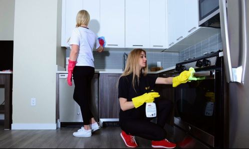 sunlight house cleaning Long Island company maids