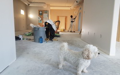 Why Post Renovation Cleaning is even more important than the very process of renovation or construction?