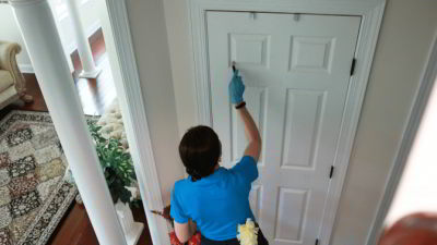 clean the doors