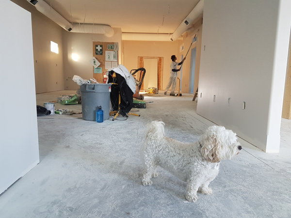 post construction cleaning nyc service