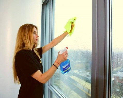 sunlight cleaning company NYC services maid